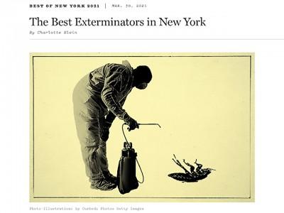 Best Exterminators in New York City